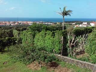 AZORES S. MIGUEL Quinta do Rebentao - Official