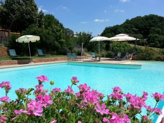 3 bedroom Apartment in San Giovanni d'Asso, Tuscany, Italy : ref 5239454