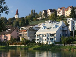 Mona Lisa My apartment is located in the most beautiful area of Zurich. Forest,