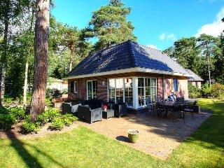4 bedroom Villa in Veldhuizen, Provincie Gelderland, Netherlands : ref 5503896