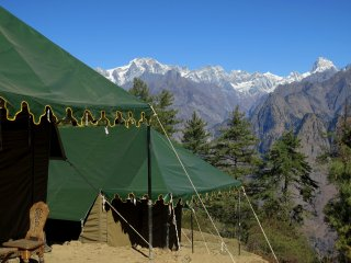 Auli Woods - luxury camping in Himalayas (1)