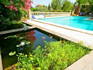 8 bedroom Villa in Pezenas, Occitania, France : ref 5247163