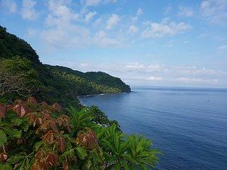 View of Mar al Cielo Eco-Retreat...11 acre, private oceanfront jungle paradise.