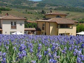 3 bedroom Villa in Strada in Chianti, Tuscany, Italy : ref 5218514