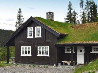 5 bedroom Villa in Liagrenda, Oppland, Norway : ref 5178004