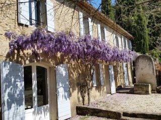 MAS du PERUSSIER -AMANDIERS- Provence, Luberon, Grande Maison, Piscine, 11 pers.