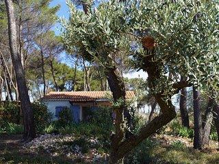 'Le cabanon'- Gile de charme en Provence