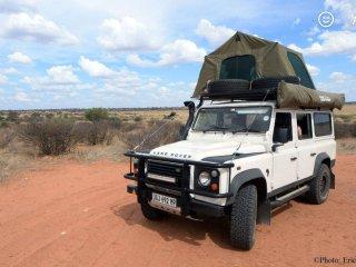 Gecko Kruger Camping Experience - Kruger National Park