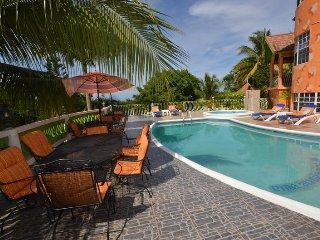 LARGE MANSION! FAMILY REUNIONS! WEDDINGS! Dream Castle Villa, Montego Bay 6BR