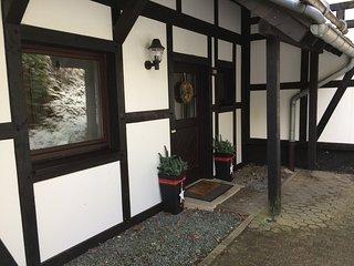Familienfreundliches, modernes F**** Ferienhaus direkt an Skipisten+Wanderwegen