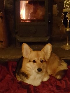 ...with an Inglenook housed log burner for cosy curl ups....