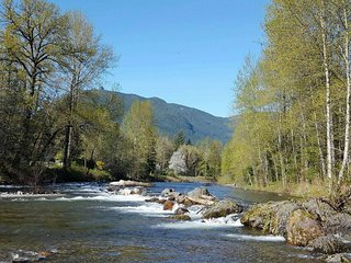 Willow's Creek
