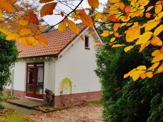 Comfortabel huisje met sauna (Vaassen) Geniet van Veluwse natuur en de eekhoorns