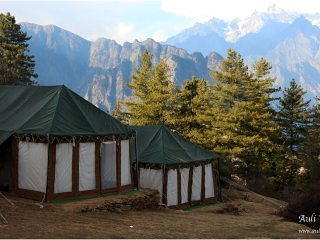 Auli Woods - luxury camping in Himalayas (3), vakantiewoning in Chamoli District