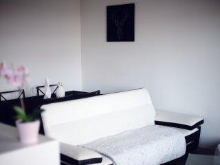 Très bel appartement T2