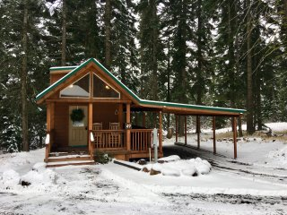 #49 Hyatt Lake Cabin - 3RD NIGHT FREE! (Sleeps 2)