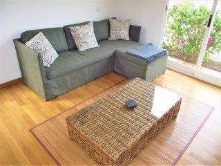 Comfortable new sofa.