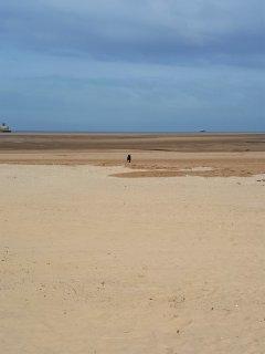 Huge sandy beach practically on your doorstep