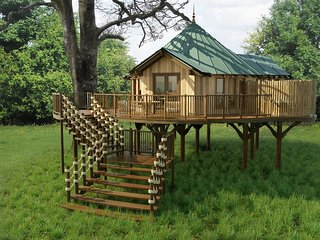 Treehouse on the Lake, Clowance Estate located in Camborne, Cornwall