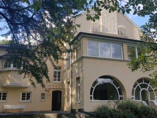Villa Tönisstein 1900 | direkter Rheinblick | Berge & Wanderwege | Thermalbäder