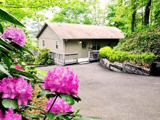 Big Oaks Pointe - Close to Great Smokys Train Ride - Wooded Seclusion & Mountain