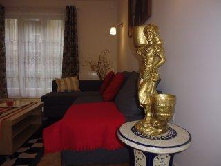 Charmant et spacieux  appartement   dans le centre de Cracovie- 6-8 persons