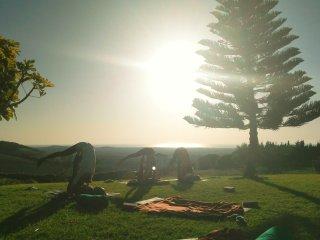 The Yoga Bubble, Yoga Retreats, Courses, and Teacher Trainings