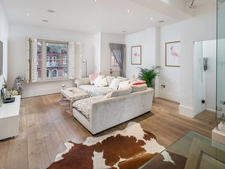 Beautiful 3 bed 2.5 bath in Fulham