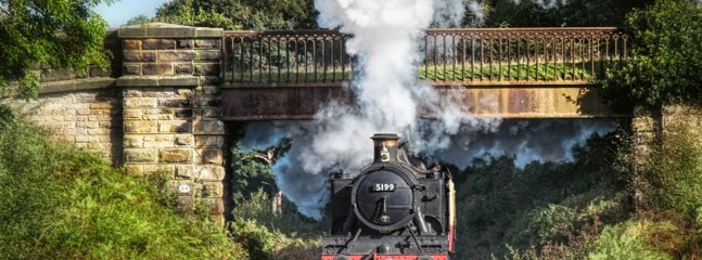 Pickering Steam Train.