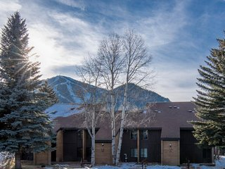 Cozy, warm condo with amazing mountain and golf course views and AC