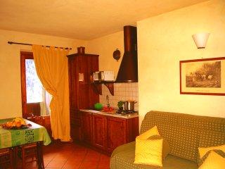 Appartamwento con camino 5 posti letto