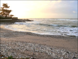 Confort et nature en front de mer