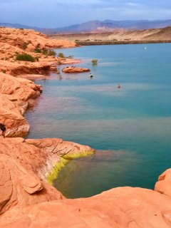swimming at Sand Hollow