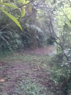 Hiking trails here at Keytoparadise.