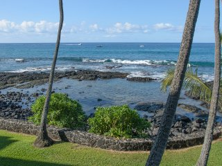 Natural rock pool directly in front of condo - favorite turtle hangout.