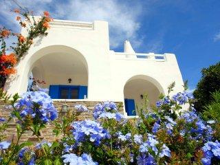 Villa Lydia, a Unique Paros view Villa (free car included)