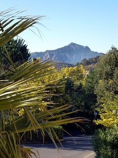 View of Mimosa out of the bathroom window in February.Walks in the Esterel hills.