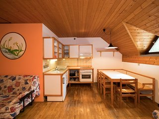 Apartment JEGLIC (Apt. Savica by Lake Bohinj)