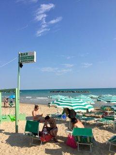 The beach in summer (1)