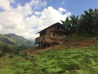 Eco Cabana en Pijao Quindio con vista