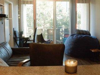 Luxury Apartment in Heart of Santa Monica