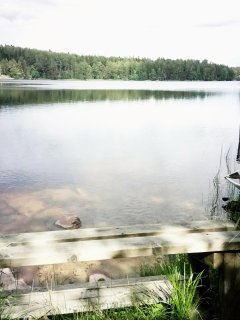 Here you can start your fishing or rowboat trips or just swim in the clean natural water.