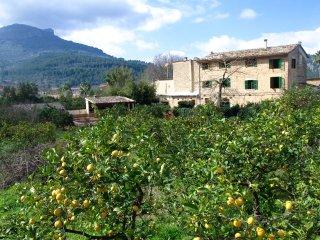4 bedroom Villa in Soller, Balearic Islands, Spain : ref 5511919