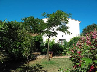 3 bedroom Villa in Lorgues, Provence-Alpes-Côte d'Azur, France : ref 5437091