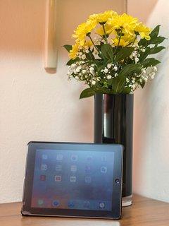 iPad at your disposal