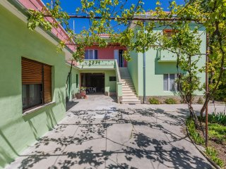 Apartments Jelen (17281-A1)