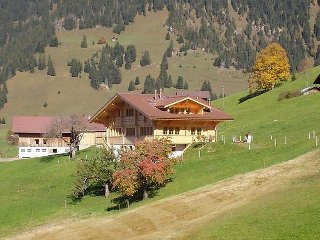 2 bedroom Apartment in Gstaad, Bern, Switzerland : ref 5079360