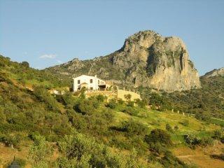 102849 -  House in El Gastor