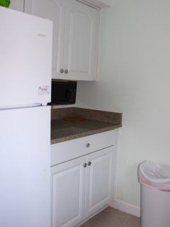 The cabinets are well stocked. There is additional counter space too.