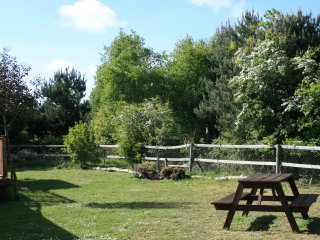 Kelling Haven's garden is one of the few on the Park that is open to sunshine not shaded by trees.